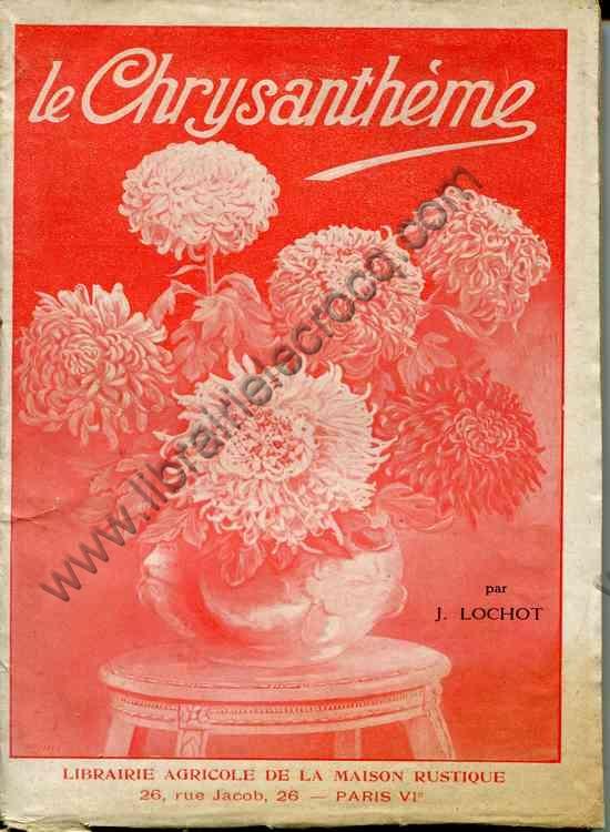 LOCHOT J., Le chrysanthème